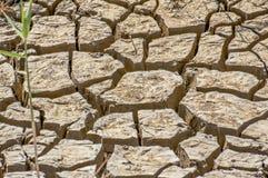 Gebarsten dray aarde, droogte, de hete zomer royalty-vrije stock foto