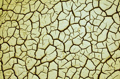 Gebarsten droge aardetextuur Stock Fotografie