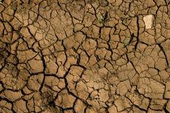 Gebarsten droge grond Stock Afbeelding