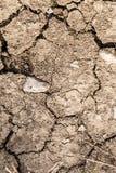 Gebarsten, droog door de droogte geteisterd uitgedroogd landvuil Royalty-vrije Stock Foto