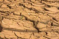 Gebarsten droog land bij dam in Brazilië stock afbeeldingen