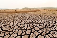 Gebarsten droog land zonder water abstracte achtergrond stock afbeeldingen