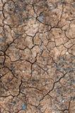 gebarsten grond Stock Fotografie