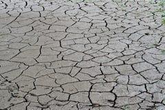 Gebarsten grond, grondzoutgehalte, ecologische ramp Stock Afbeelding