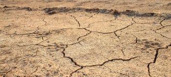 Gebarsten grond zonder water Natuurrampen Stock Foto