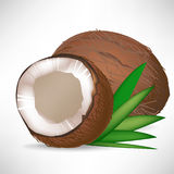 Gebarsten kokosnoot en gehele kokosnoot Royalty-vrije Stock Afbeeldingen