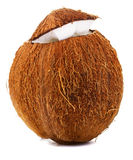 Gebarsten kokosnoot Stock Fotografie