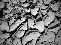 Gebarsten Kreekbed in de Droge Zon van Colorado stock afbeeldingen
