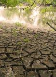 Gebarsten land op rivieroever Stock Foto