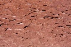 Gebarsten rode aarde in woestijn Royalty-vrije Stock Afbeeldingen