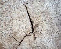 Gebarsten sectie van houten textuur voor achtergrond Royalty-vrije Stock Afbeelding