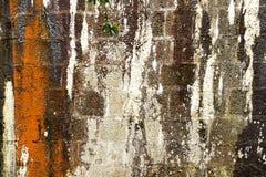 Gebarsten steenmuur Stock Foto's
