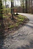 Gebarsten weg door bos lightbeam stock afbeeldingen