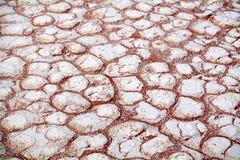 Gebarsten witte droge kleioppervlakte op oranje zandachtergrond in close-up van de de woestijn hoogste mening van Etosha de zoute stock foto