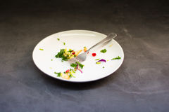 Gebeëindigde Salade royalty-vrije stock foto's
