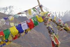 Gebedvlaggen in Ladakh, India stock afbeelding
