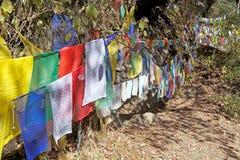 Gebedvlaggen, Paro, Bhutan stock fotografie