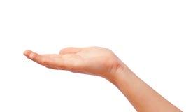 Geben der Hand stockfoto