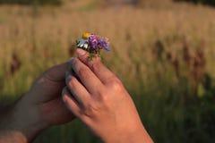 Geben Sie Blumenhände Lizenzfreie Stockfotografie