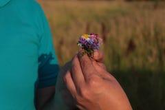 Geben Sie Blumenhände Stockfotos