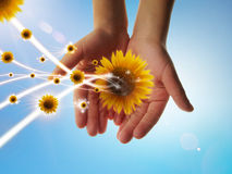 Geben Sie eco Energie Lizenzfreies Stockfoto