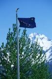 Geben Sie Markierungsfahne von Alaska an Lizenzfreie Stockbilder