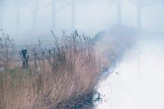 Geben Sie mit Schilf und Bretterzaun und Winterbäumen mit einem Graben um Lizenzfreie Stockfotografie