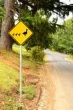 Geben Zeichen für Ente nach lizenzfreies stockfoto