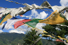 Gebetsflaggen floatting im Wind (Bhutan) Lizenzfreie Stockfotos
