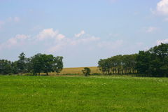Gebied, bomen, en hemel Royalty-vrije Stock Afbeeldingen