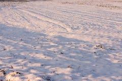 Gebied dat door sneeuw wordt behandeld Stock Foto