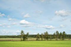 Gebied in een platteland Royalty-vrije Stock Afbeeldingen