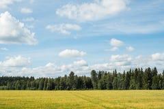Gebied in een platteland Royalty-vrije Stock Afbeelding