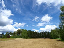 Gebied en blauwe hemel Stock Foto