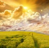 Gebied en stormachtige hemel Royalty-vrije Stock Afbeelding