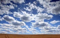 Gebied met gehouwen graan en wolken stock afbeeldingen