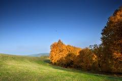 Gebied met gehouwen graan en wolken stock afbeelding