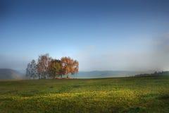 Gebied met gehouwen graan en wolken royalty-vrije stock foto