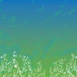 Gebied met gras en bloemen Royalty-vrije Stock Afbeelding