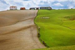 Gebied met groen gras en gebied met gewerkt land Royalty-vrije Stock Foto's