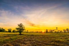 Gebied met mooie sky15 royalty-vrije stock afbeelding