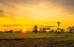 Gebied met mooie sky14 stock fotografie