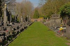 Gebied met rijen van graven in Westerbegraafplaats-begraafplaats, Gent stock foto's