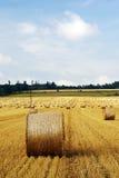 Gebied na oogst Stock Foto's