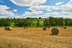 Gebied na oogst in de zomer als achtergrond royalty-vrije stock afbeeldingen