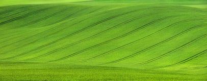 Gebied op de heuvel met tractorslepen Stock Foto