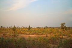 Gebied rond Nagpur, India Droge uitlopers met boomgaarden & x28; landbouwers gardens& x29; Royalty-vrije Stock Afbeelding