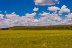 Gebied tegen de hemel met wolken en bossen Royalty-vrije Stock Afbeelding