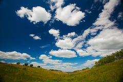 Gebied of vallei met gras op achtergrond van blauwe hemel Stock Afbeeldingen