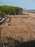 Gebied van bamboebuis en meningspunt Stock Fotografie